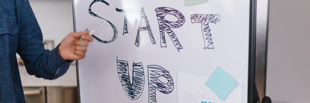 De tecidos a idiomas, como as startups estão inovando o mercado