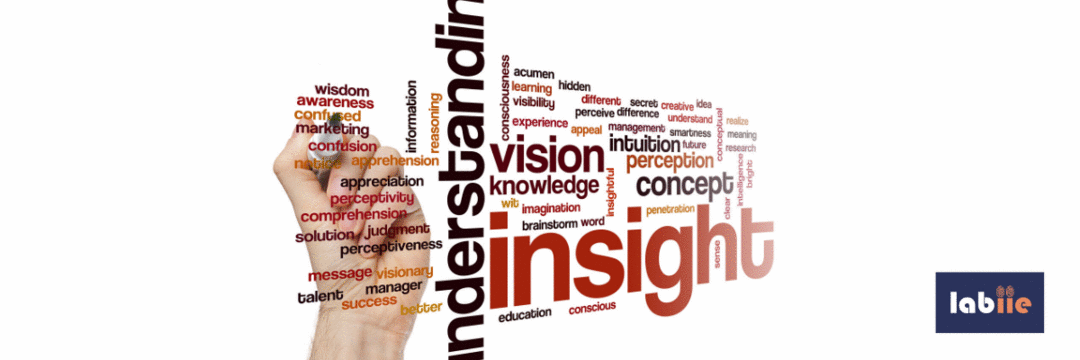 Insight - Parte 1