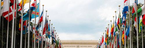 A conexão entre startups e os objetivos do desenvolvimento sustentável da ONU