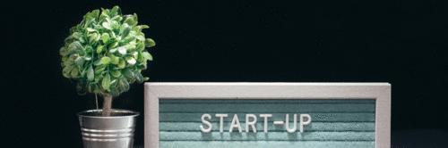 Meio ambiente está sendo prioridade para as startups
